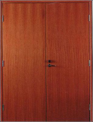дверь металлическая двустворчатая ламинированная